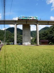 宇津井駅 (8).jpg