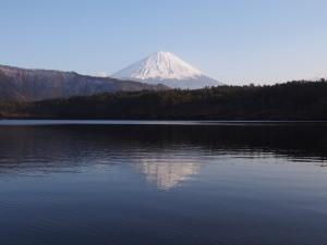 富士山西湖.jpg