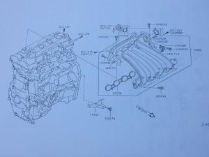 HR15_manifold-intake-gaskets (2).jpg