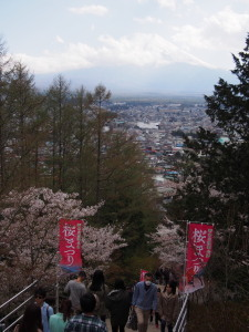 Sakura&MtFuji (5).jpg